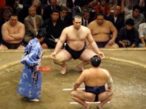 Kotooshu vs. Chiyotaikai